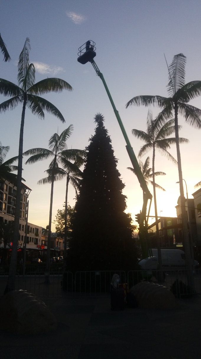 Christmas in hot Cairns!