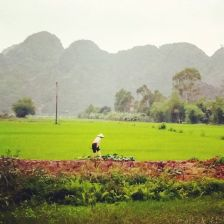 Taking photos from Ninh Binh's pretty landscapes